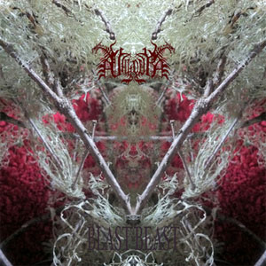 VALDUR: new track from black/death occultists streaming