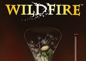 Wildfire by Matt Hawkins & Linda Sejic Heating Up the Scene in June