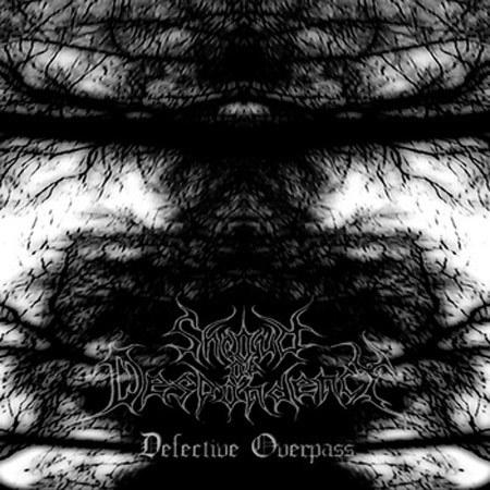 shroud_despondency_defective