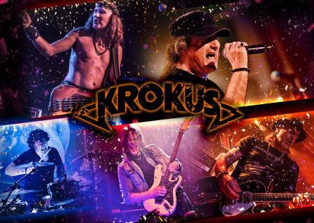krokus_2014