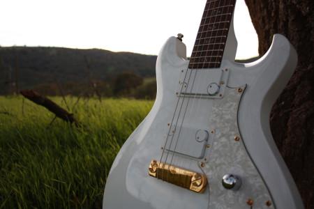 Dialtone-Pickups---Guitar