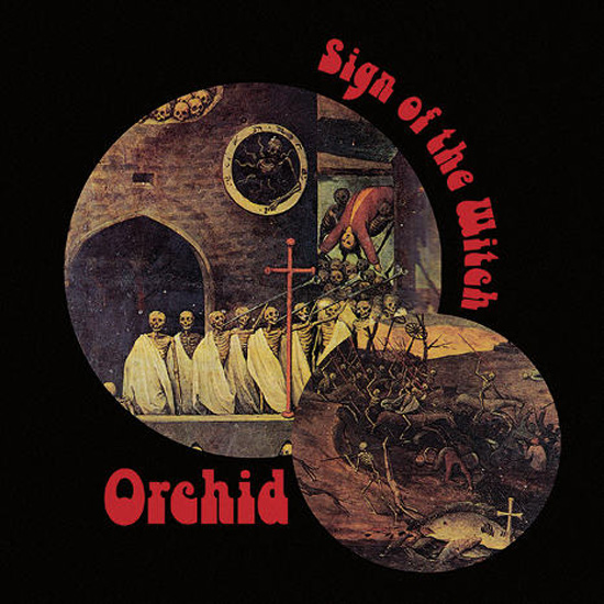 orchid_signofthewitch