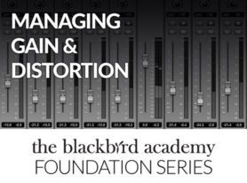 Managing Gain & Distortion from The Blackbird Academy Foundation Series